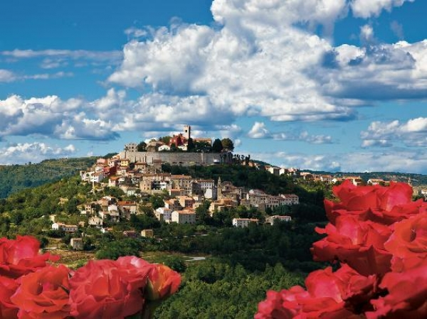 Truffles in Croatia: The Gourmet Tour of Istria
